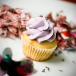 Lavender Honey Cupcake